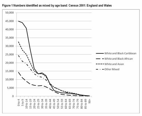 Figure 1 Numbers identified as mixed by age band: Census 2001: England and Wales